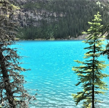 at Moraine Lake-Banff National Park. (3)